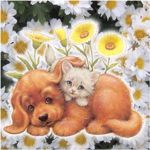 Открытки с котятами и щенками